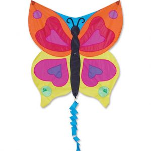 Rainbow Butterfly Fun flyer